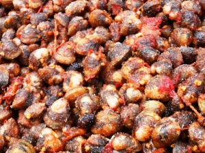 The shellfish salad up close. Slimey - Raw Shellfish in tamarind sauce !!!