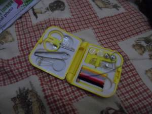 Mini Sewing Kit.