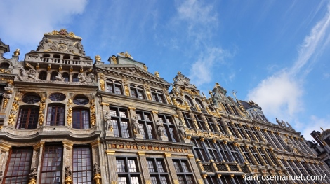 brussels13