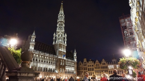 brusselsnight6